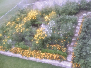 my garden as seen from the upper deck